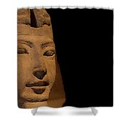 Sphinx On Black Shower Curtain