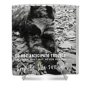 Sphinx Quote Shower Curtain