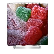 Spice Drops And Sugar Shower Curtain