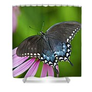 Spice Of Life Butterfly Shower Curtain