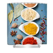 Spices On Blue   Shower Curtain