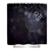 Spider Art Shower Curtain