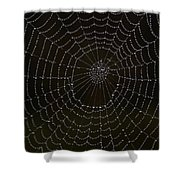 Spider Cobweb  Shower Curtain