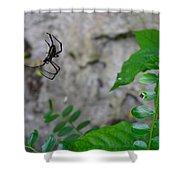Spider In Thin Air Shower Curtain