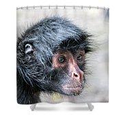 Spider Monkey Face Closeup Shower Curtain