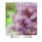 Spiderweb In The Mist Shower Curtain