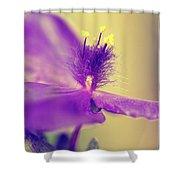 Spiderwort Shower Curtain