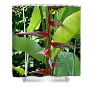 Spike Tree Shower Curtain