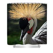 Spiked Crane Shower Curtain