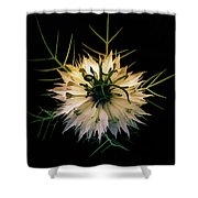 Spiky On Black Shower Curtain