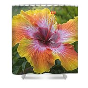 Spin The Bottle Hibiscus Shower Curtain
