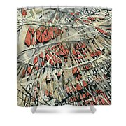 Spinart Riverwash - Large Format Shower Curtain