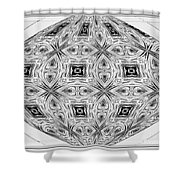 Spinning Globe In Black And White Shower Curtain