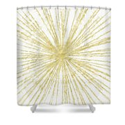 Spinning Gold- Art By Linda Woods Shower Curtain