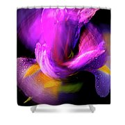 Spinning Iris Shower Curtain