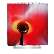 Spinning Shower Curtain