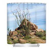 Spiny Cactus East Of Wickenburg Shower Curtain