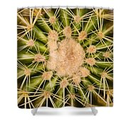 Spiny Cactus Needles Shower Curtain