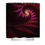 Spira Mirabilis Shower Curtain by John Edwards