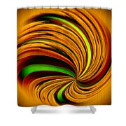 Spiral On Wood Shower Curtain