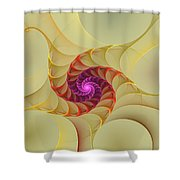 Spiral Rainbow Of Color Shower Curtain