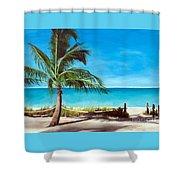 Spirit Healer Shower Curtain