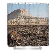 Spirit Of The Desert Shower Curtain