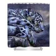 Spirit Of The Snow Shower Curtain
