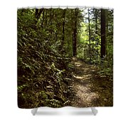 Spirit Of The  Wood Shower Curtain