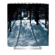 Spirit Pony In A Shadowed Wood Shower Curtain