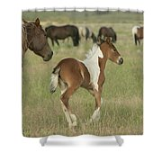 Spirit Run Shower Curtain