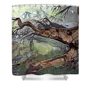 Spirit Tree Shower Curtain