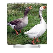 Spirited Geese Shower Curtain