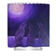 Spirits In The Night Shower Curtain