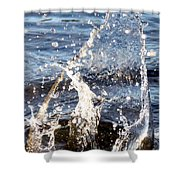 Splash Dance Shower Curtain