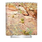 Splash Of Color In Valley Of Fire's Wash 3 Shower Curtain