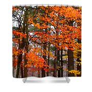 Splashes Of Autumn Shower Curtain