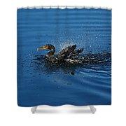 Splashing Cormorant Shower Curtain