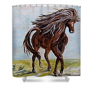 Splashing The Light - A Young Horse Shower Curtain