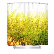 Yellow Splatter Shower Curtain