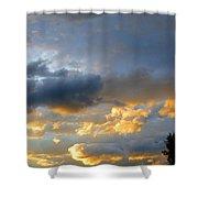 Splendid Cloudscape 1 Shower Curtain