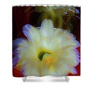 Splendid  Flower Of Cactus. Shower Curtain