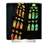 Splendid Stained Glass Windows Shower Curtain
