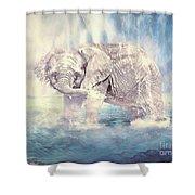 Splish Splash Shower Curtain
