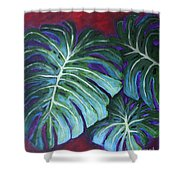 Split Leaf Philodendron Shower Curtain