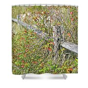 Split Rail Fence And Poison Ivy Shower Curtain