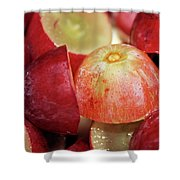 Split Red Grapes Shower Curtain