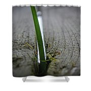 Split The Difference Shower Curtain