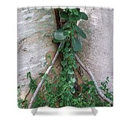 Split Tree Shower Curtain