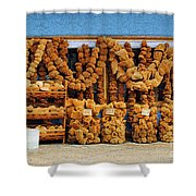 Sponges For Sale Shower Curtain